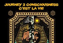 New Book Journey 2 Consciousness: C'est La Vie (That's Life) Wins # 1 in African Poetry Category on Amazon