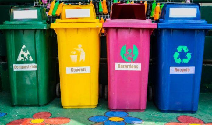 How Schools Can Combat Waste