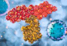 Coronavirus: UK records 11 more coronavirus deaths and 2,200 new cases