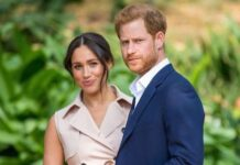 Prince Harry and Meghan Markle's Oprah interview loses at Emmys to Stanley Tucci's travel show, Report